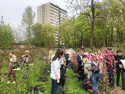 АНО Школа ландшафтного дизайна mitishi