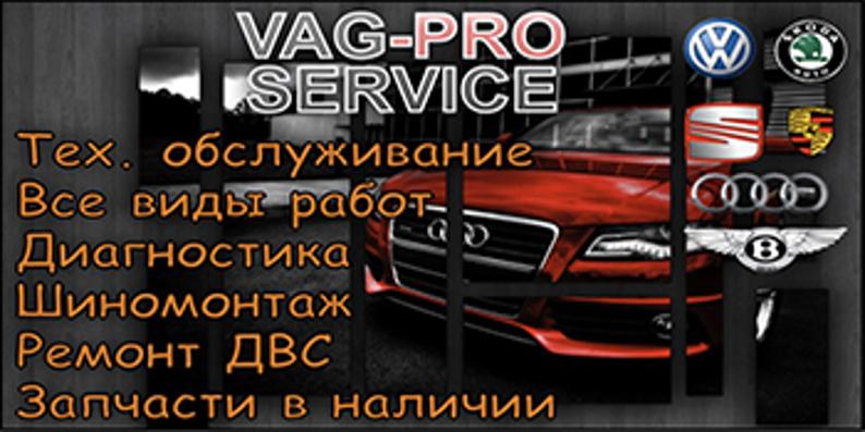 Vag-pro service himki